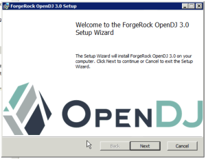 OpenDJ MSI Installer